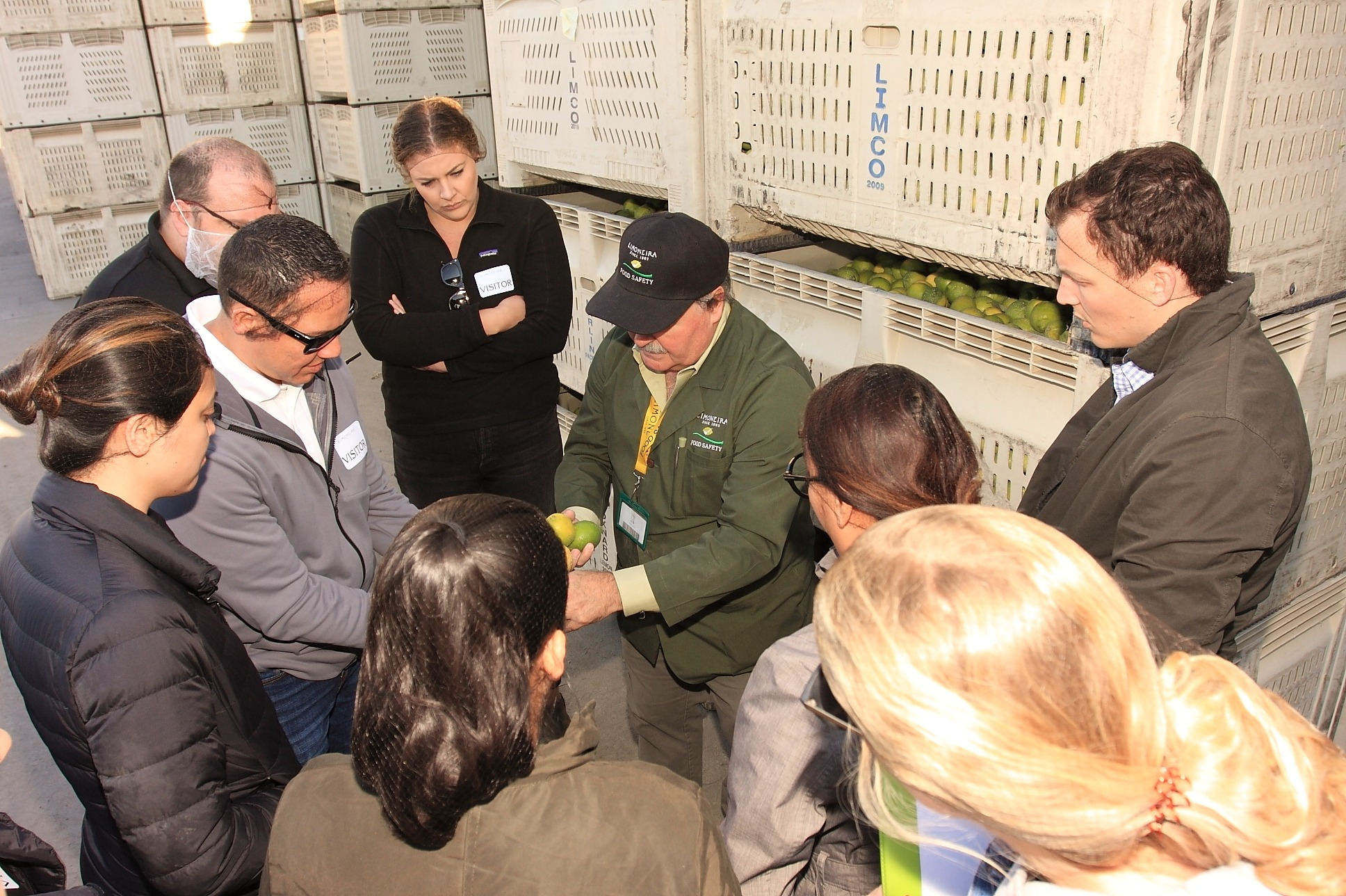 Apprentices Esmeralda Mejia, Amanda Nojadera, Jeffrey Fish, Thomas Rossi, Briana Giampaoli, Kevin Trisko, and Lizbeth Reyes learning about picking the perfect lemon from Tomas Gonzalez, Director of Global Food Safety & Compliance