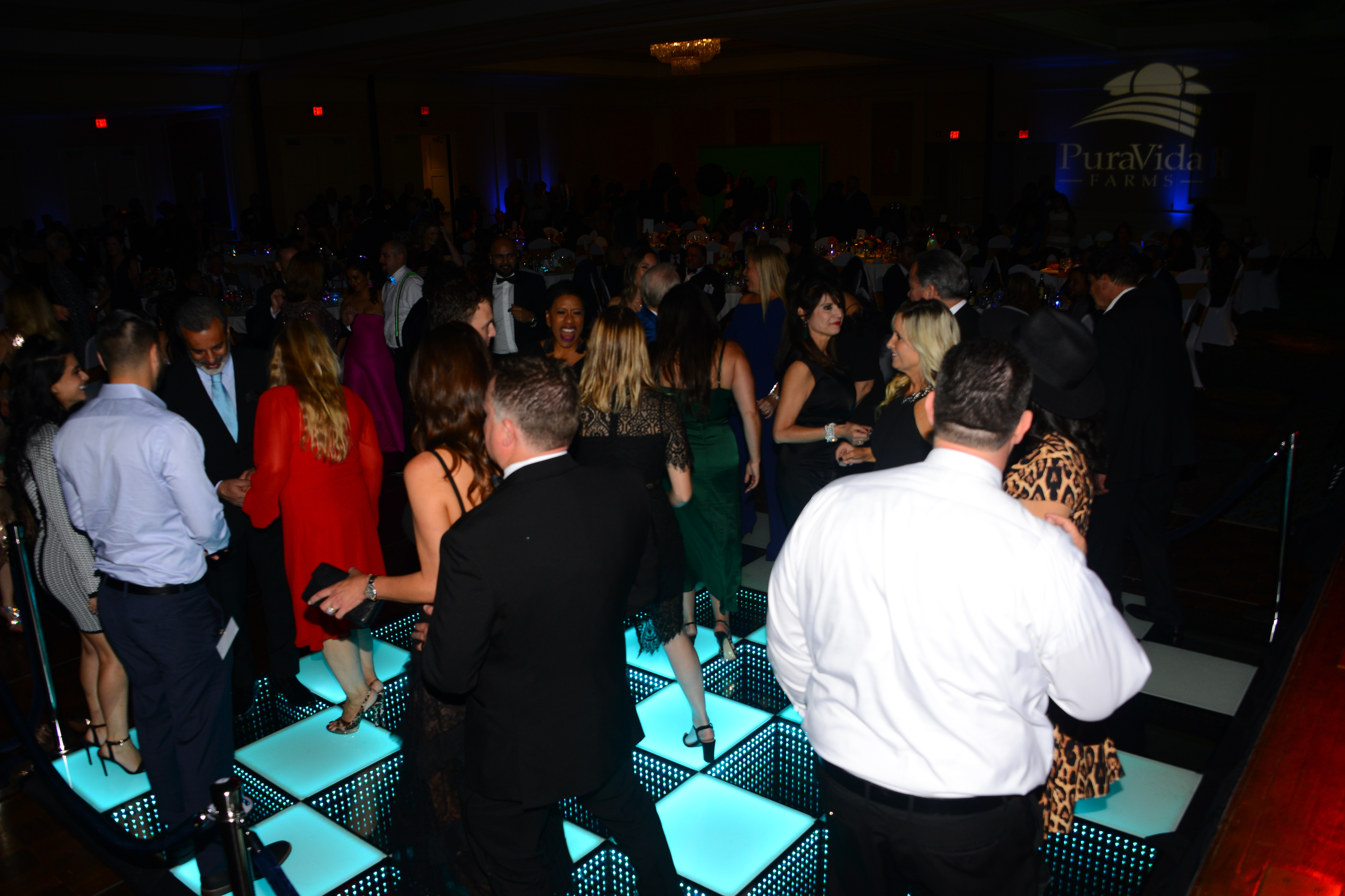 Attendees hitting the dance floor after the evening program.